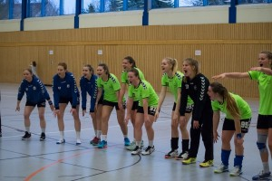2017-03-19 Fredersdorf - HSG Frauen 1